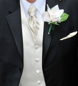 Ivory Dress Brides What Did The Groom Wear Weddingbee Groom And Groomsmen Attire Groom Wear Mens Wedding Attire