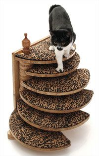 The Kitty Care Stair Is Great For Older Cats And Stylish