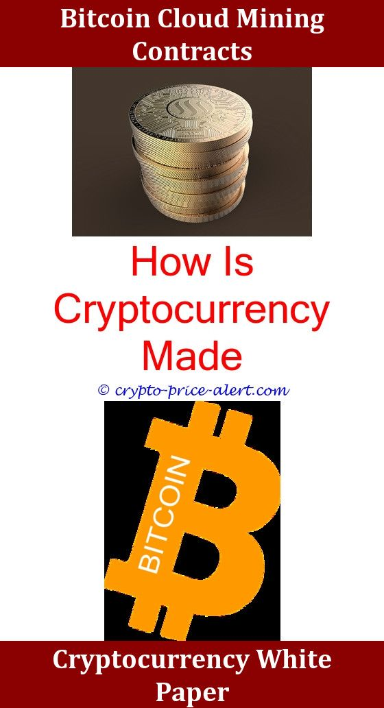 differences in top cryptocurrencies