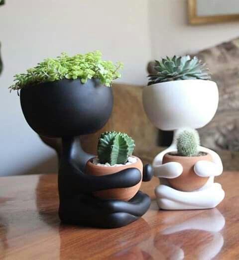 Decorando a casa com criatividade #succulentterrarium