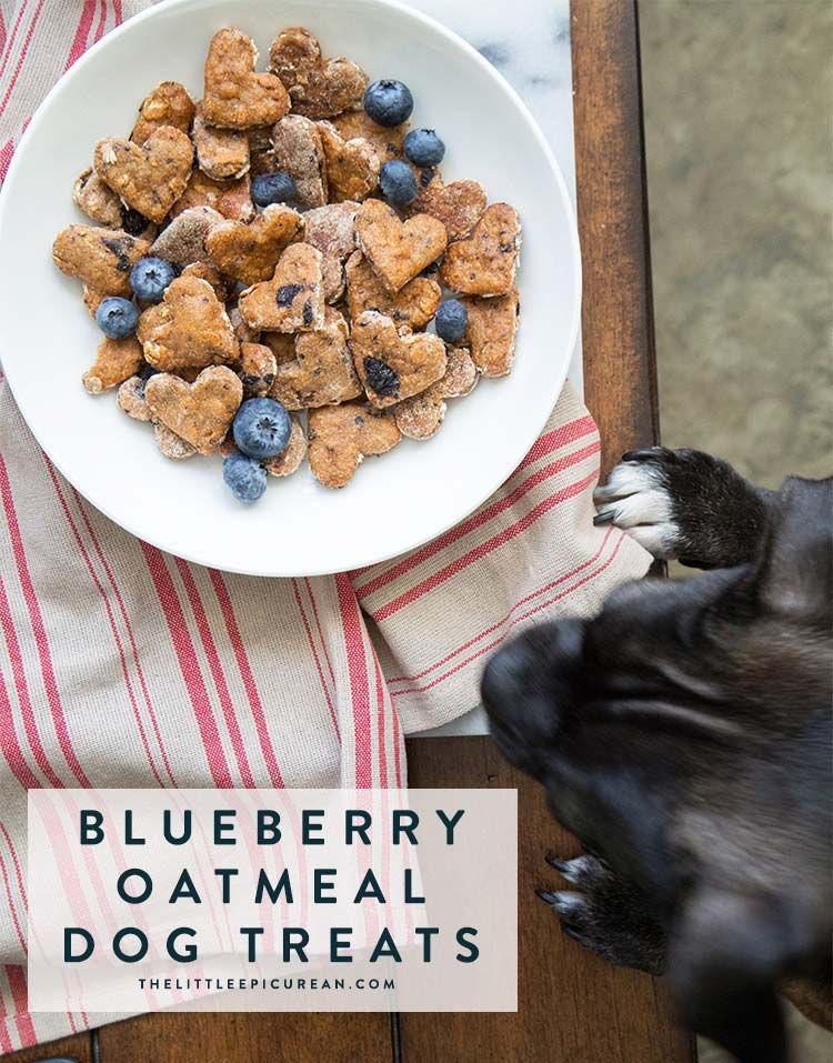 Blueberry Oatmeal Dog Treats Recipe Sweet Potatoes For Dogs