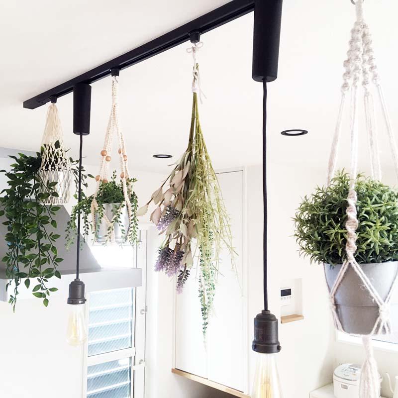 ダクトレールの植物の吊るし方 専用フックでとっても簡単
