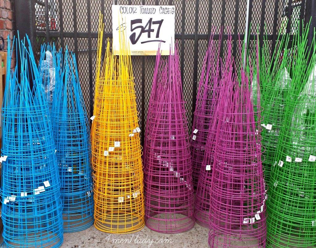 Diy Tomato Cage P*T Planter 4 Men 1 Lady Gardening 640 x 480