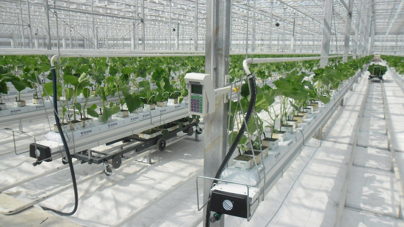 Ap Holland Greenhouse Heating System Greenhouse Heating Systems Sources Of Heat