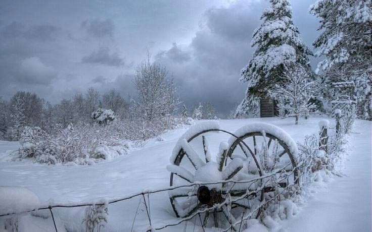 Pin by ❧ Holly Garrett ❧❧ ⛵ on Christmas and winter joy