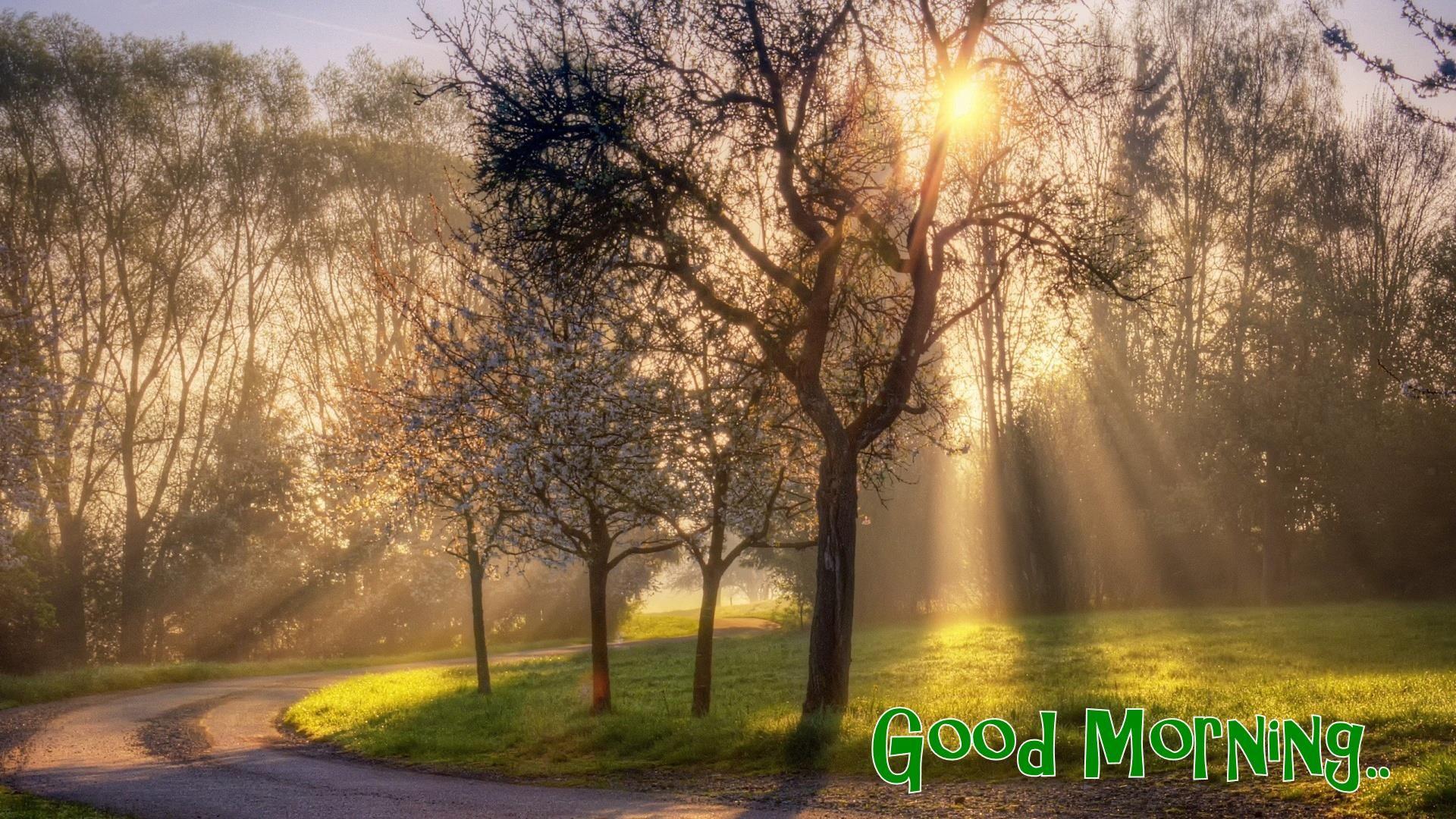 Beautiful Nature Good Morning Wallpapers Beautiful Landscapes Landscape Spring Wallpaper