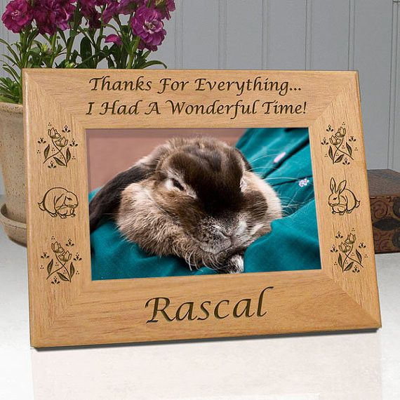 Personalized Memorial Picture Frame Thanks For Everything Rabbit
