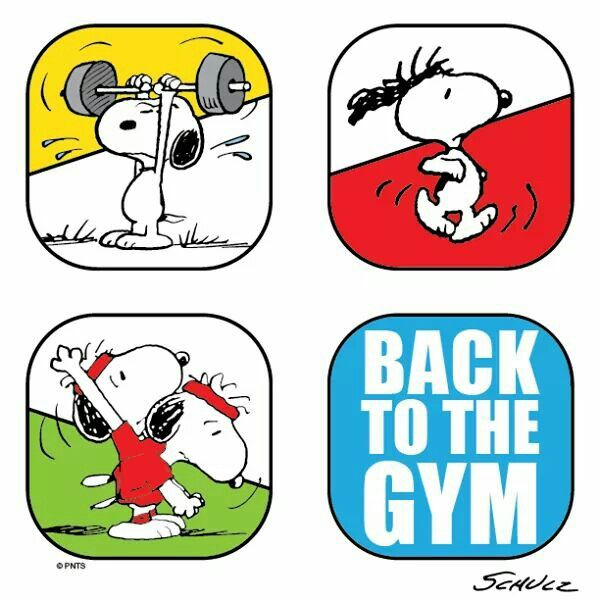 Snoopy back to the gym