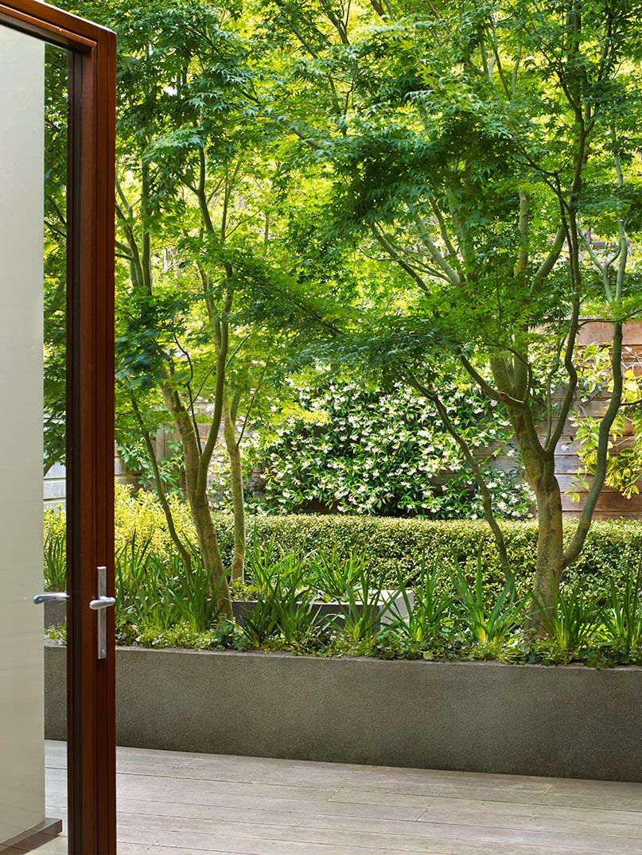 Scott Lewis Landscape Architecture Townhouse Garden Slla San Francisco