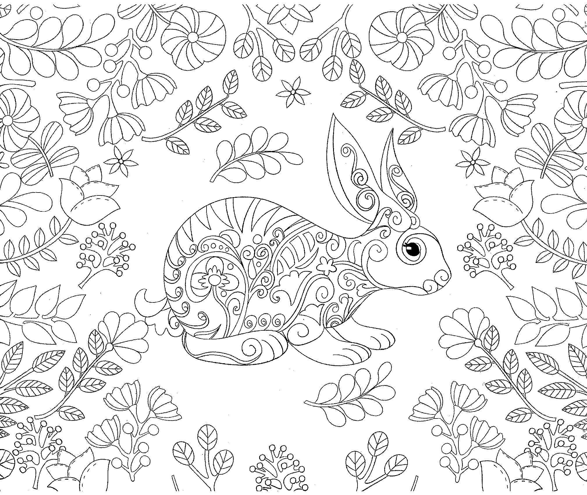 Rabbit Bunny Forest Coloring Adult Coloriage Colorir With Images