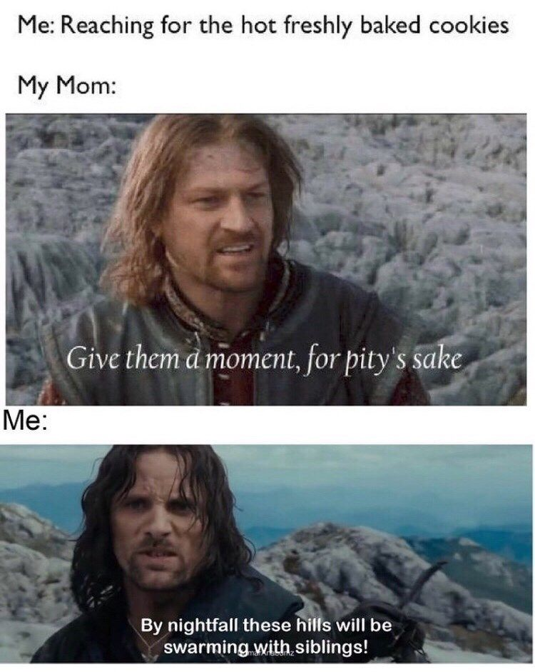 Photo of 'Lord Of The Rings' Memes For The Tolkien Fiends (18 Memes)