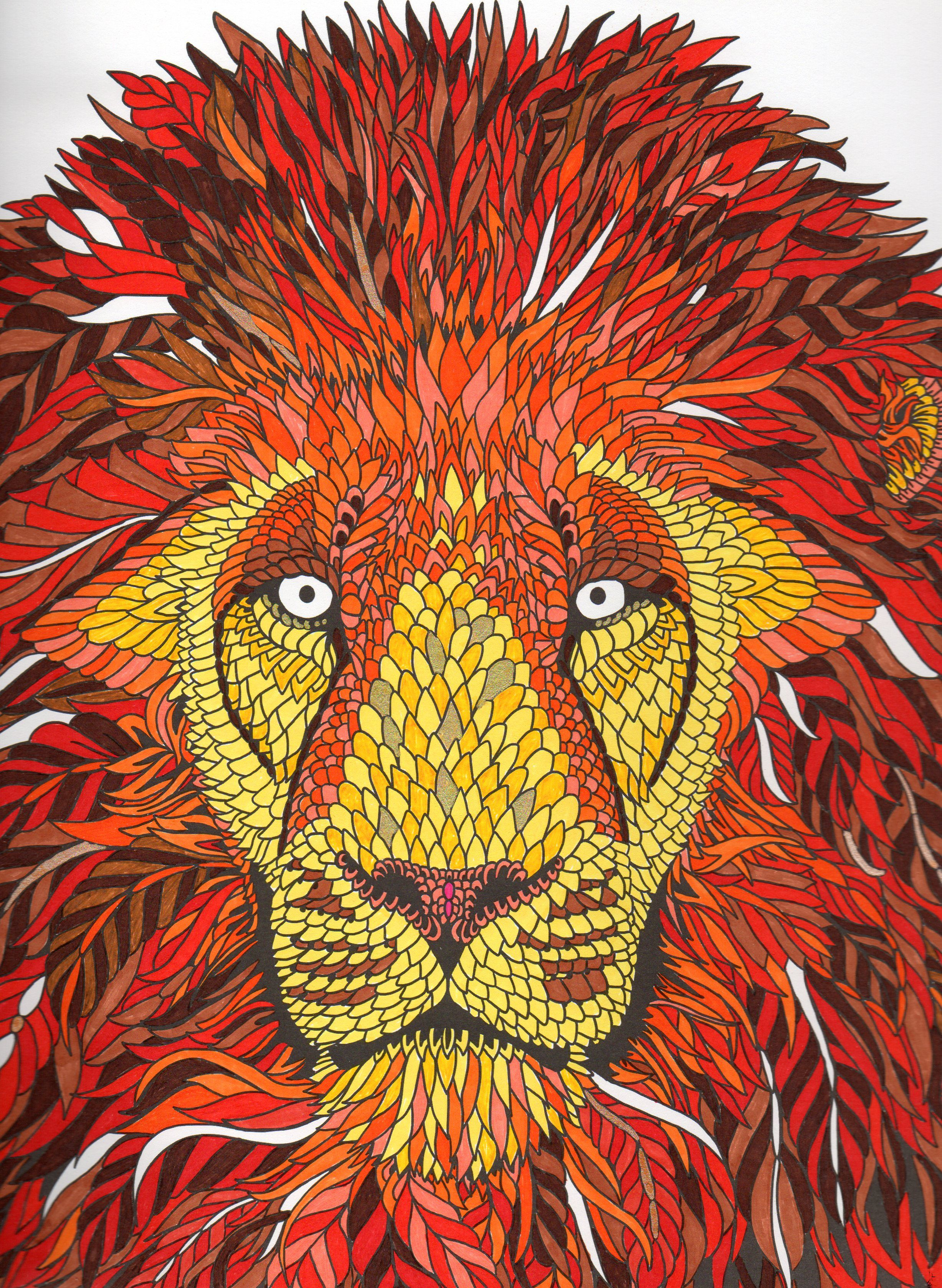 Coloring book for adults lion - Mon Lion La M Nagerie The Menagerie Colouring Book