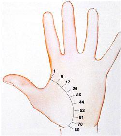 palm reading chart lifeline: Palm reading life line spiritual growth pinterest palm