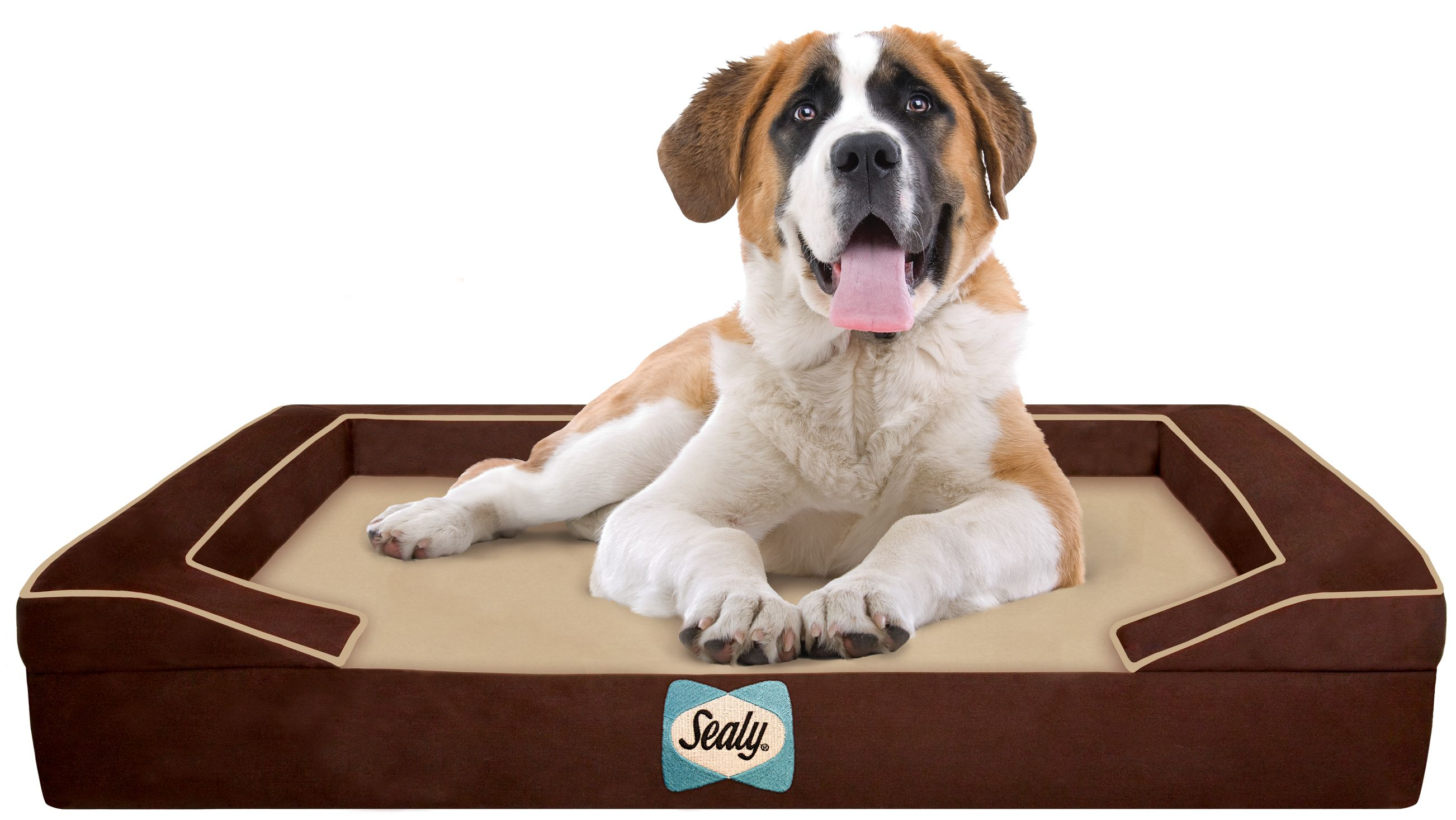 XLarge Sealy Dog Beds are in! For your largerthanlife