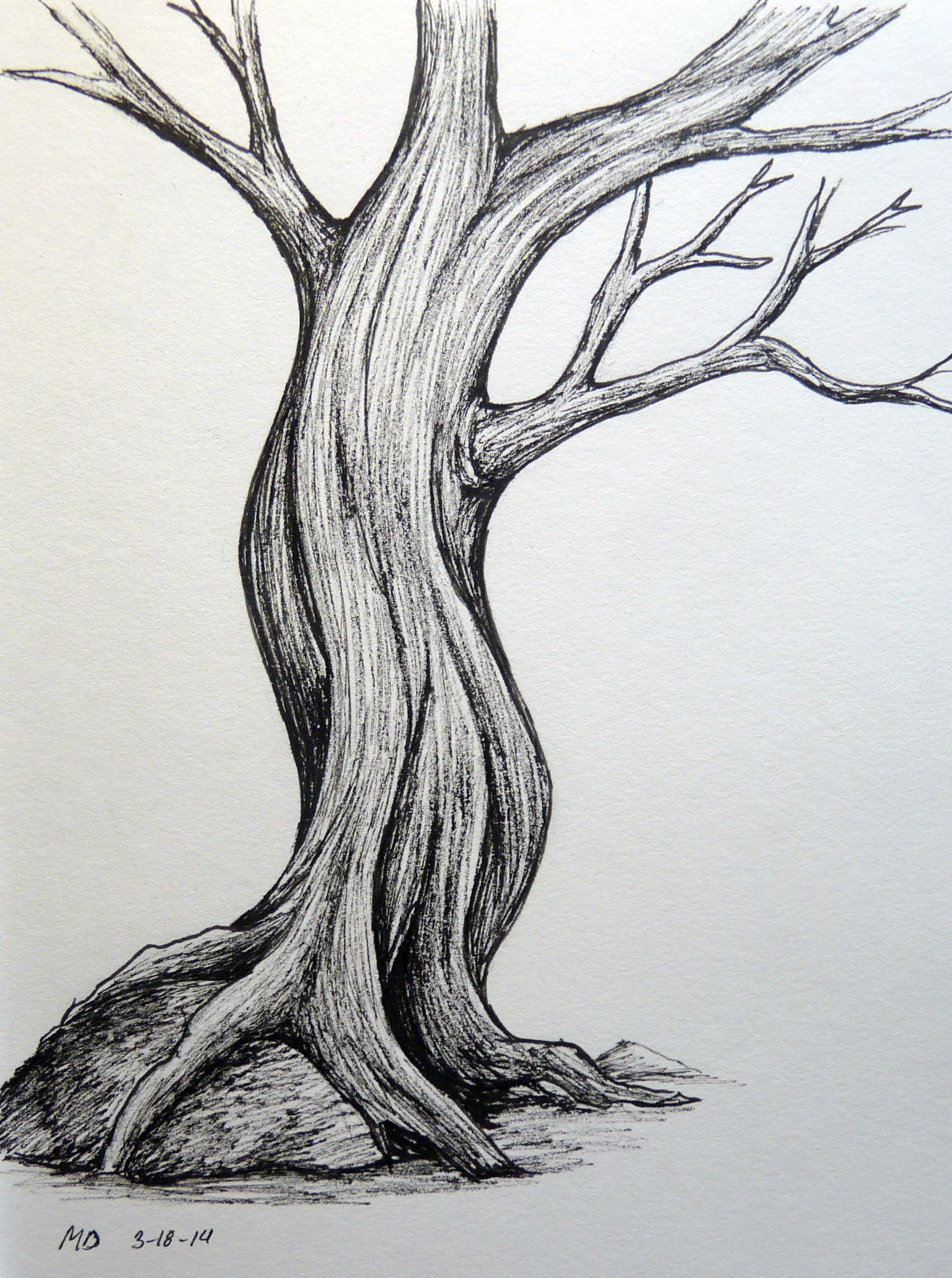 Posts About Tree On The Aspiring Illustrator Tree Drawing Tree Drawings Pencil Tree Art