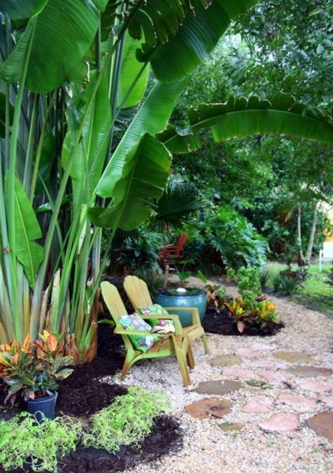 garden and lawn exotic tropical