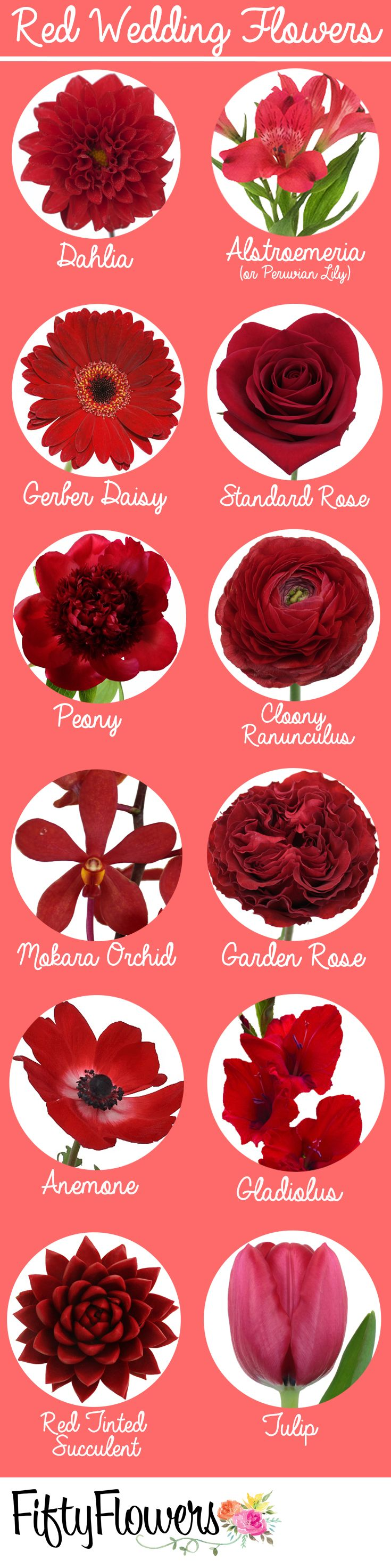 Shop for flowers by color at FiftyFlowers.com! | Flower Names ...