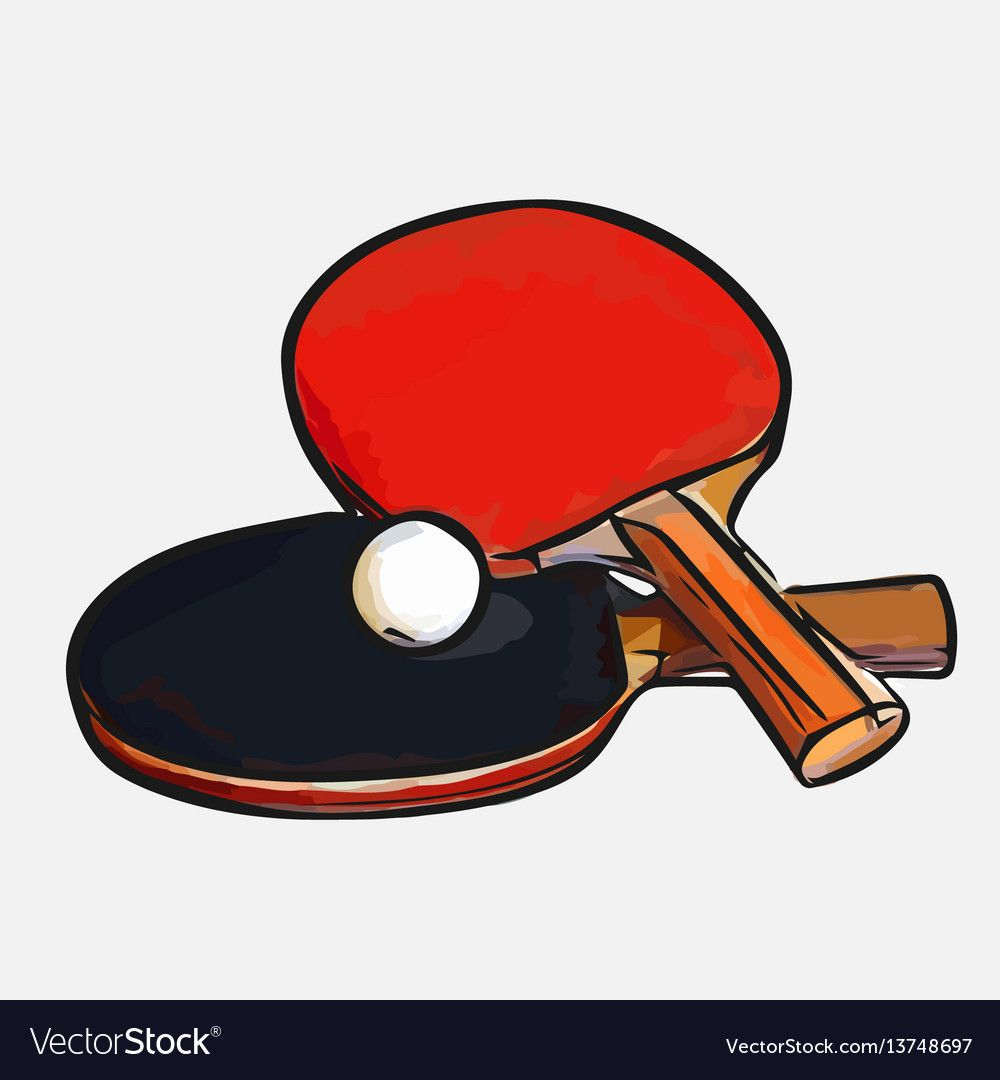 Rackets Ball Table Tennis Royalty Free Vector Image Aff Table Tennis Rackets Ball Ad Vector Sketch Fish Vector Red Boxing Gloves