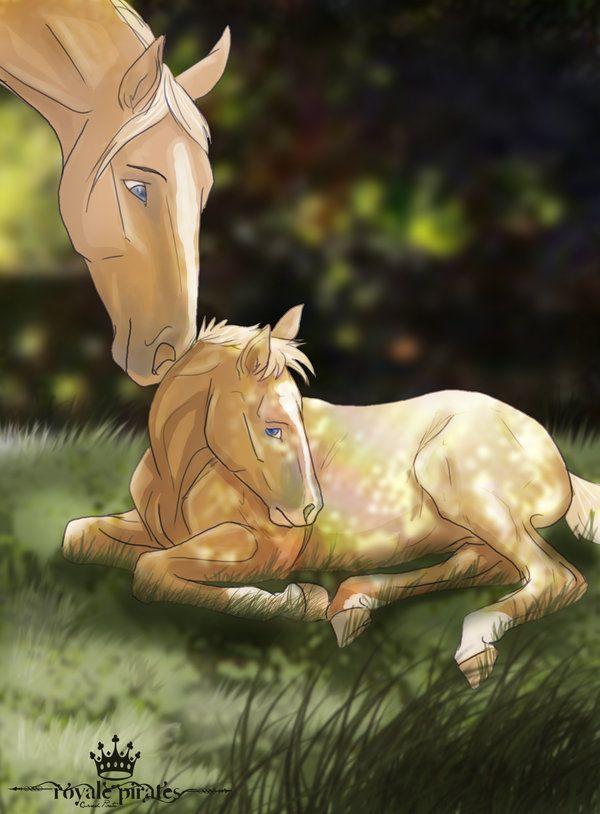 Little Miss Sunshine By Abosz007 On Deviantart Horse Drawings Horse Animation Horse Art