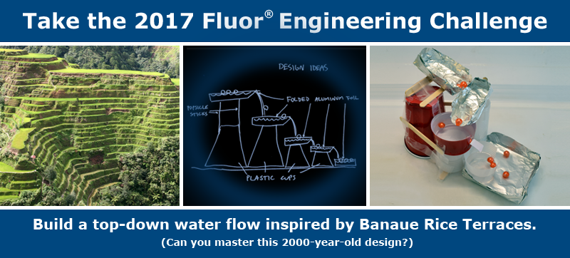 Image result for Fluor: Engineering