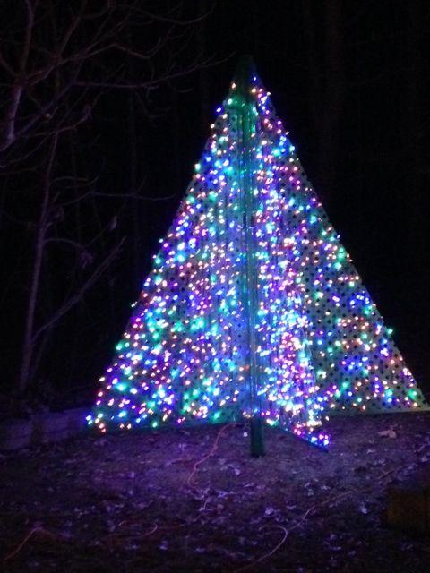 Tree Lattace Lit Up Christmas Display Ideas Pinterest