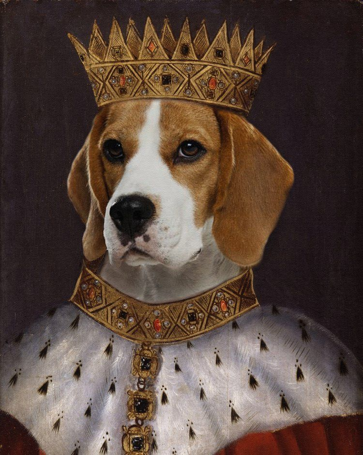 Regal Beagle Is Not Just The Bar From Three S Company It S A High Quality Pet Portrait Made From Your Own Pho Arte Del Perro Animales Con Ropa Pintura De Gato