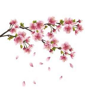 cherry blossom cartoon bing images photos pinterest cherry rh pinterest com cherry blossom cartoon images cherry blossom cartoon png