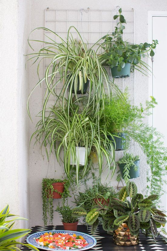 hang plants from a rack. great small space patio solution ...
