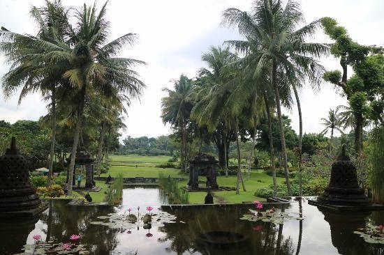 30 Pemandangan Indah Yogyakarta Pemandangan Yang Indah Picture Of Hyatt Regency Yogyakarta Download 5 Tempat Wisata Alam Di Jogja Yan Di 2020 Pemandangan Hawai Alam