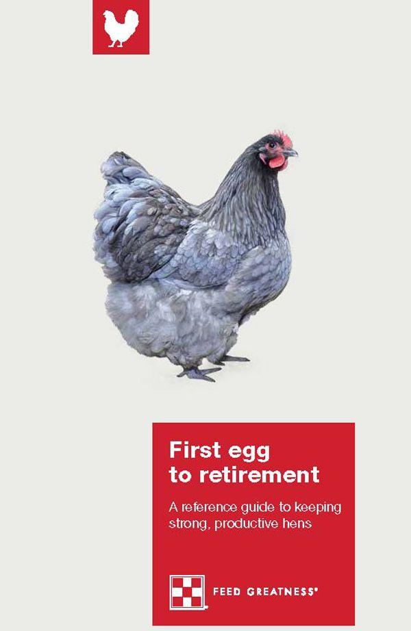 Pin by Backyard Poultry Magazine on Backyard Poultry ...