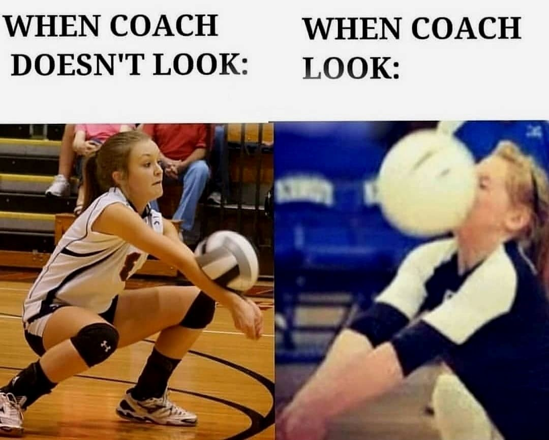 Volleyball Corner Shared A Photo On Instagram Dm For Credit Removal Caption This Grab Your Favouri In 2020 Volleyball Workouts Volleyball Jokes Volleyball Humor