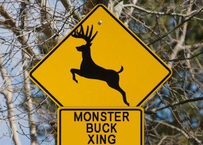 What Deer Xing Signs Should Look Like In The Big Buck States Deer Whitetail Deer Wildlife Habitat
