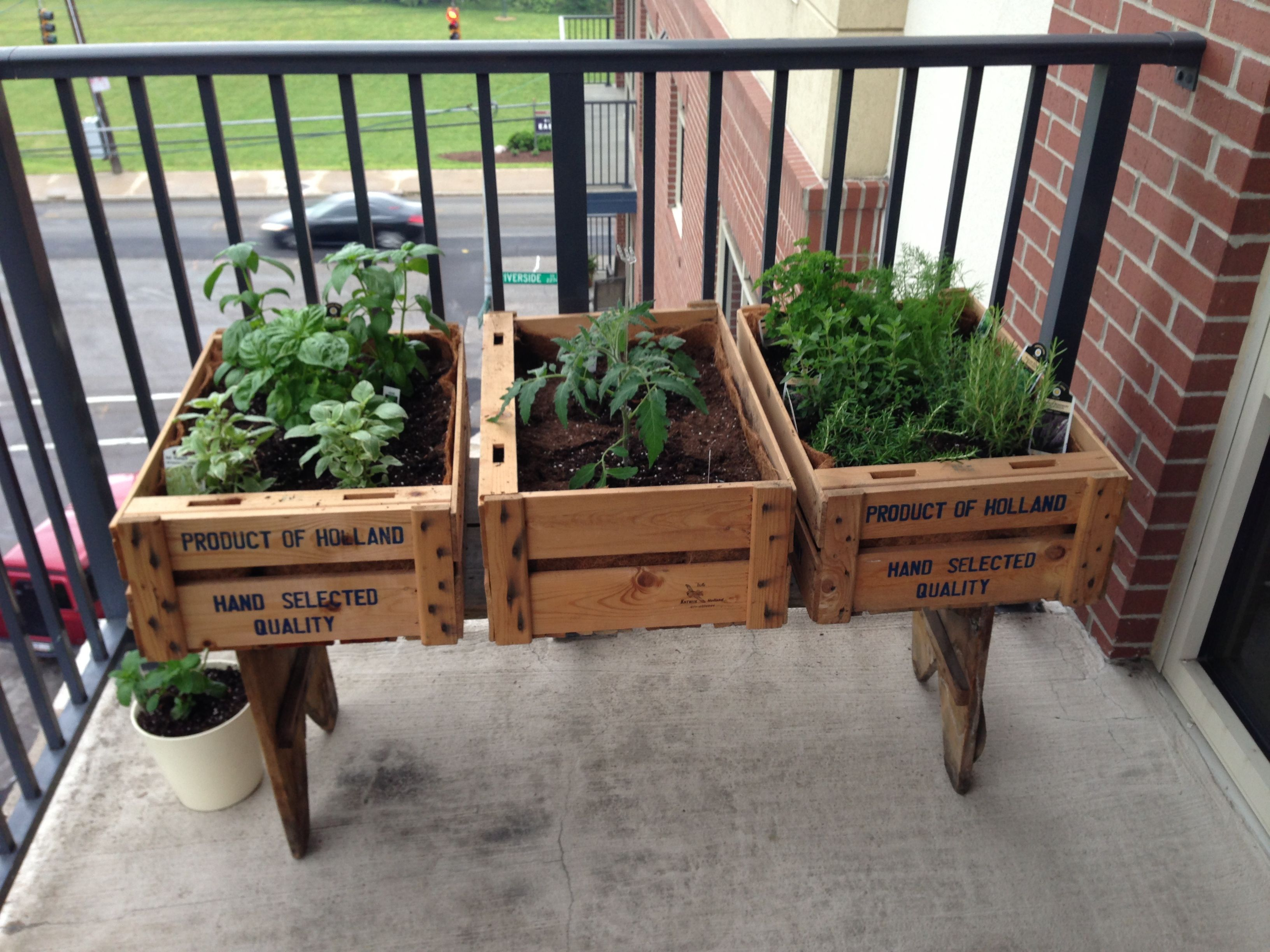 Best Balcony Herb Gardens Ideas On Pinterest Patio Herb