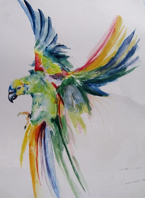 Peinture aquarelle perroquet en vol hi watercolor bird watercolor painting - Dessin de perroquet en couleur ...