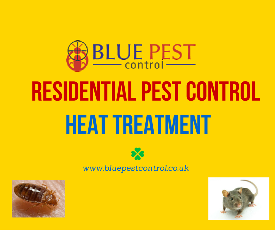 Blue Pest Control is a London based company that offers