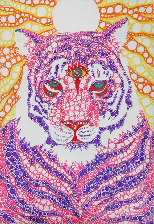 Love the third eye on this tiger! Tigers have excellent night ...