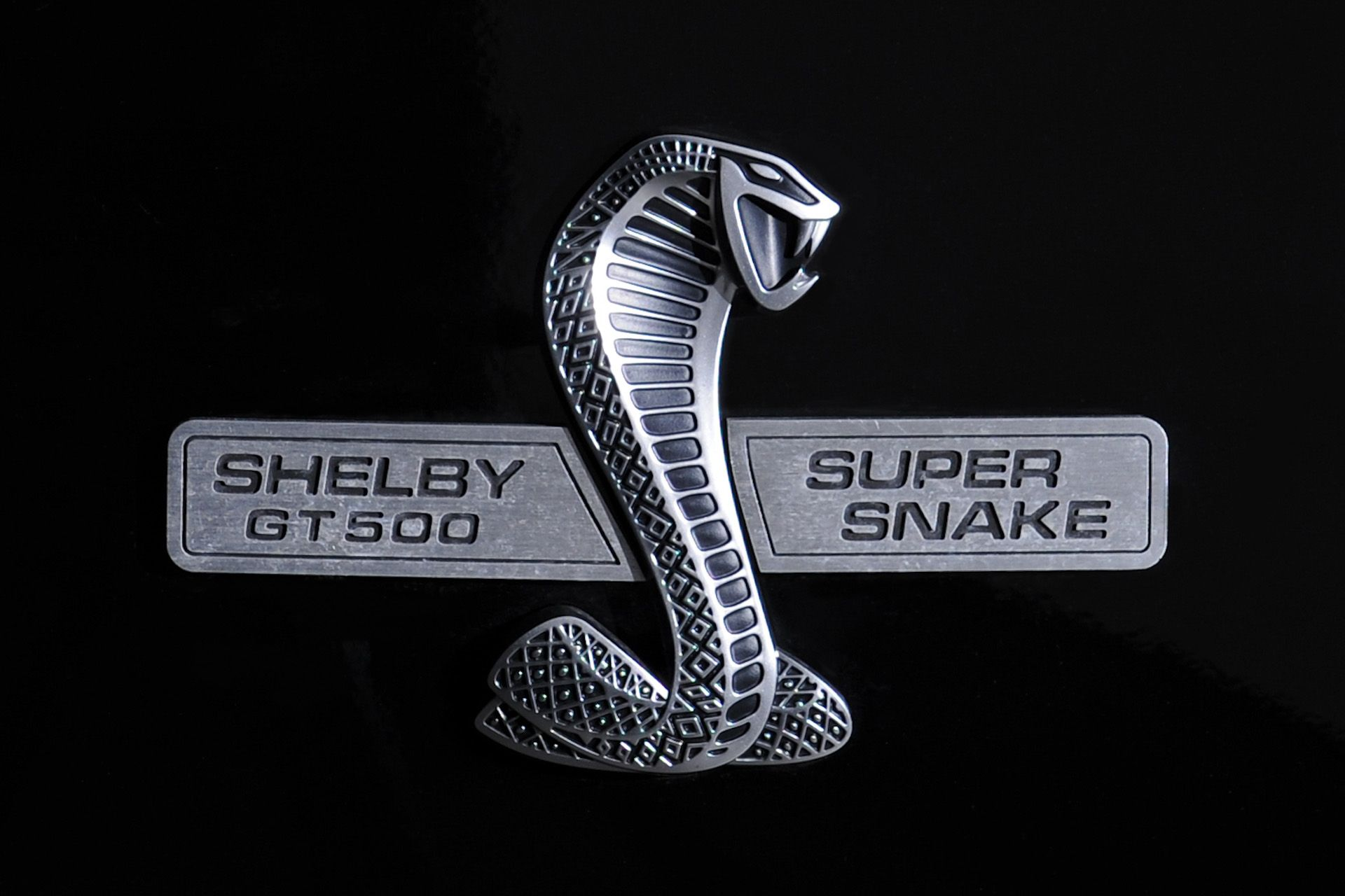Shelby logo free 3d model ready for cg projects available formats shelby logo free 3d model ready for cg projects available formats other free 3d models pinterest 3d 3d animation and animation buycottarizona Choice Image