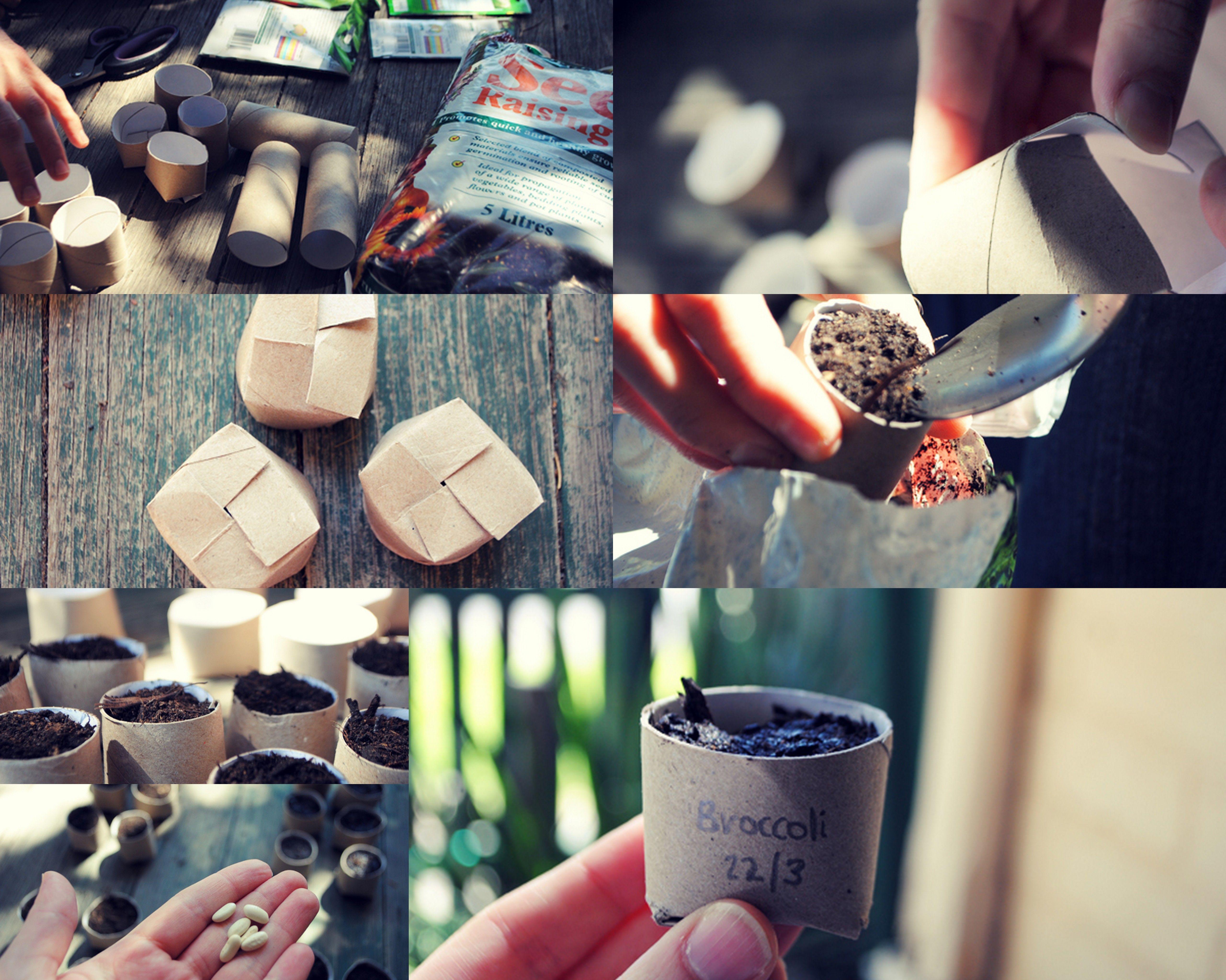 Sowing Seeds for Winter - Reuben ~~