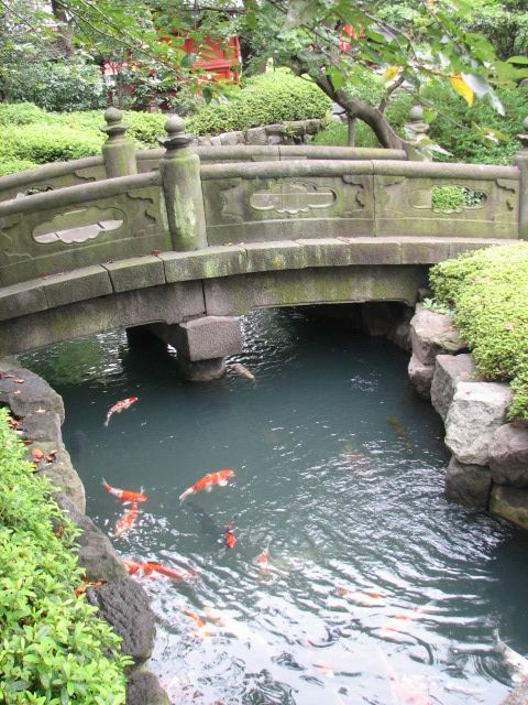 Newest project for the backyard japanese zen garden with for Koi pond japanese garden