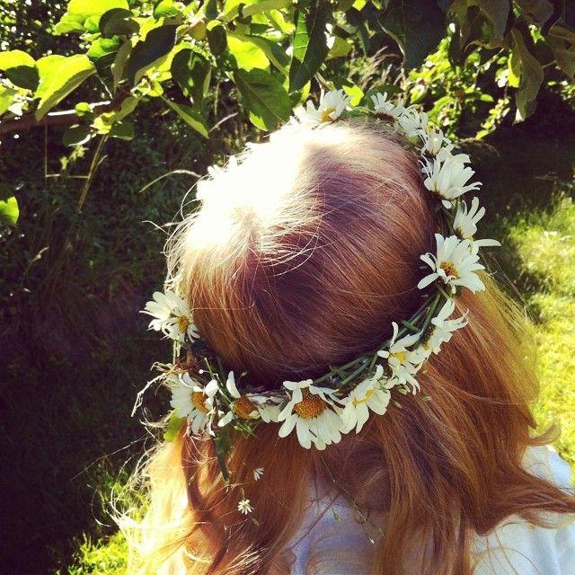 Blomsterkrans og midtsommar #blomsterkrans #prestekrager #flowers #garland #daisies