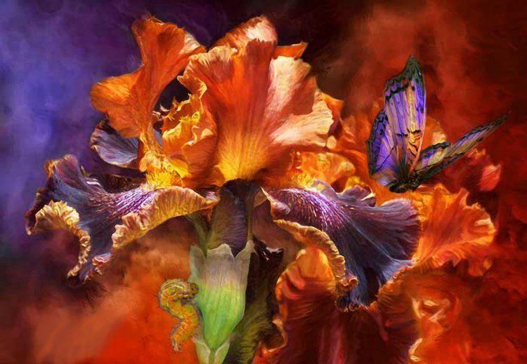 чудесные цветы картины фото корень сохранен