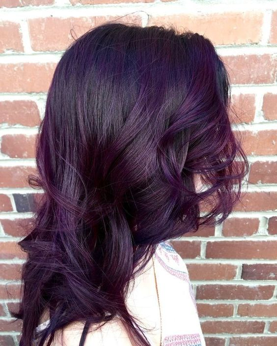 40 Stunning Purple Hair Color Ideas In 2019 Street Style Inspiration Hair Color Purple Blackberry Hair Colour Brunette Hair Color