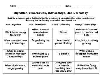 Hibernation Migration Camouflage Dormancy Reading Specialist