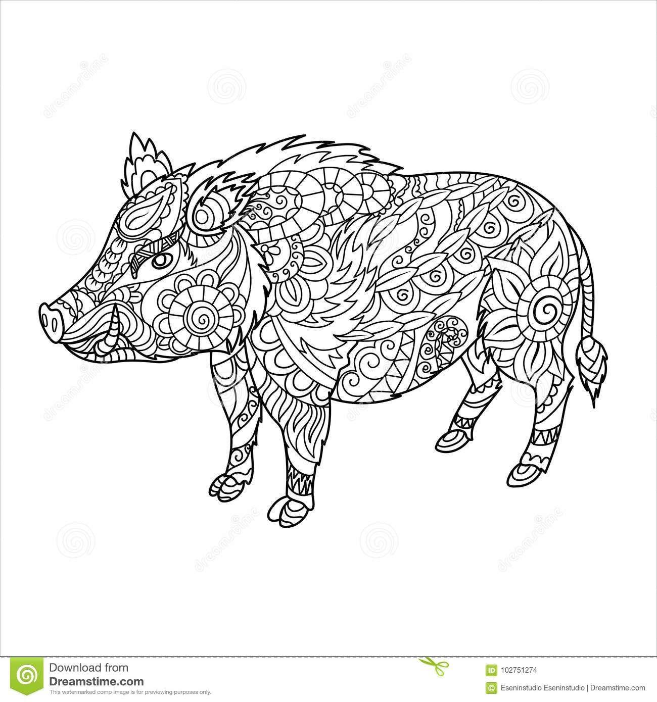 Pin Von Barbara Auf Coloring Farm Animals Ausmalen Wildschwein Bilder