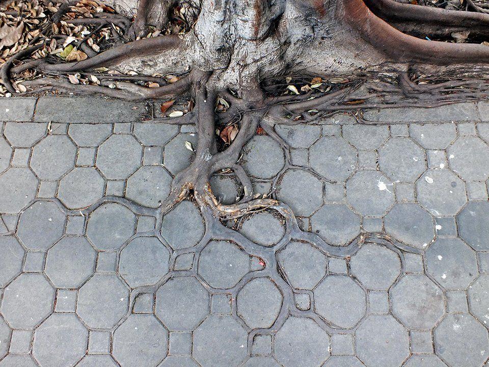 Sidewalk in Bangkok