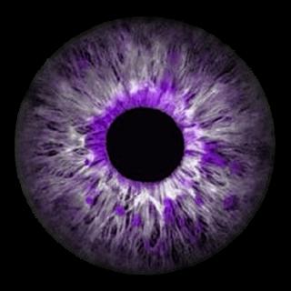 12 Astounding Learn To Draw Eyes Ideas Eye Drawing Eye Texture Eye Art