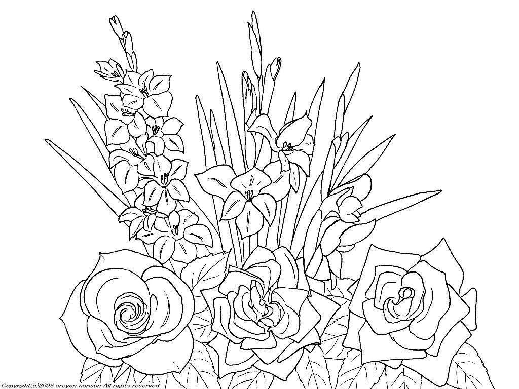バラグラジオラスの下絵ー6月の誕生月の誕生花の塗り絵 ぬりえ