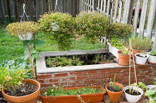 raised brick pond | Raised pond, Pond, Backyard on Raised Garden Ponds Ideas id=61822