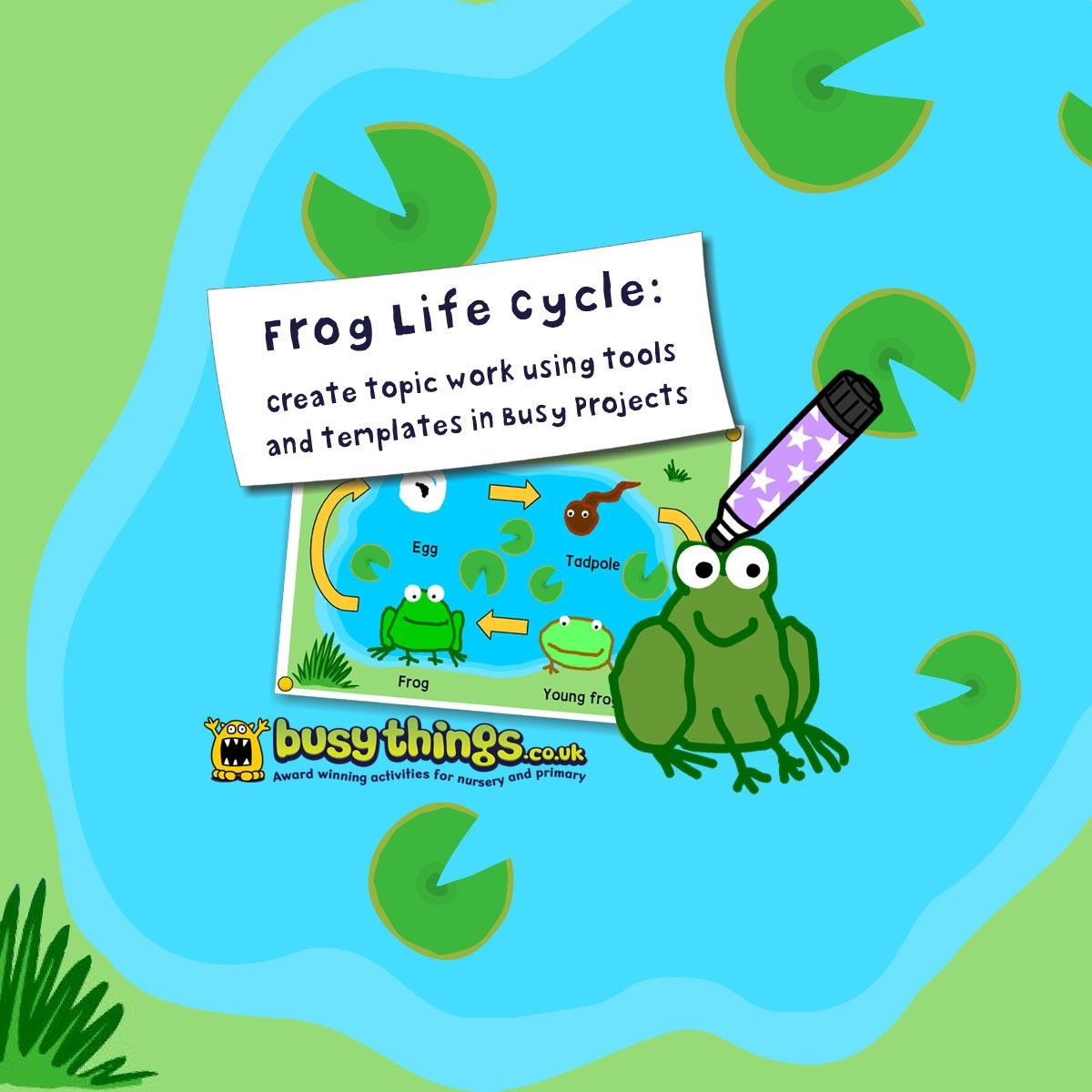 Life Cycle Of A Frog Worksheet For Primary School Children