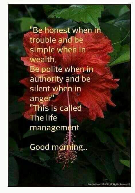 Pin By Sidhartha Patnaik On Beautiful Thoughts Morning Quotes